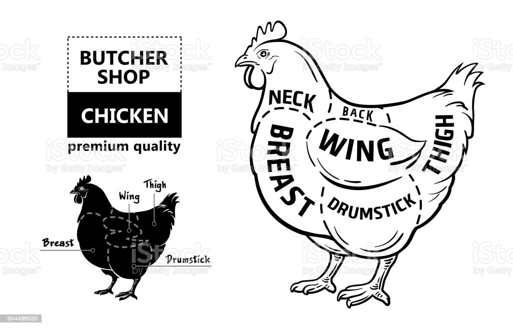 cut of meat set poster butcher diagram and scheme chicken