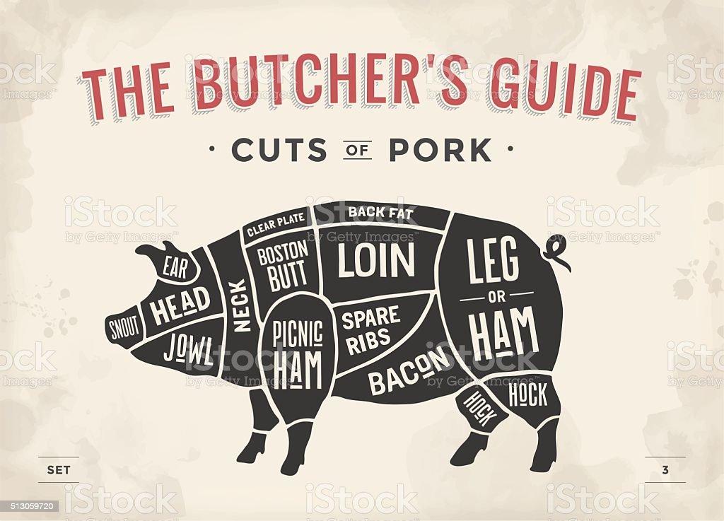 Ensemble de viande. Diagramme affiche de boucher, Plan et Guide de - Illustration vectorielle
