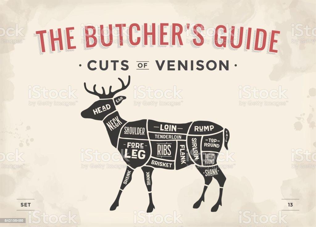 Cut Of Meat Set Poster Butcher Diagram Scheme Venison Stock Vector ...