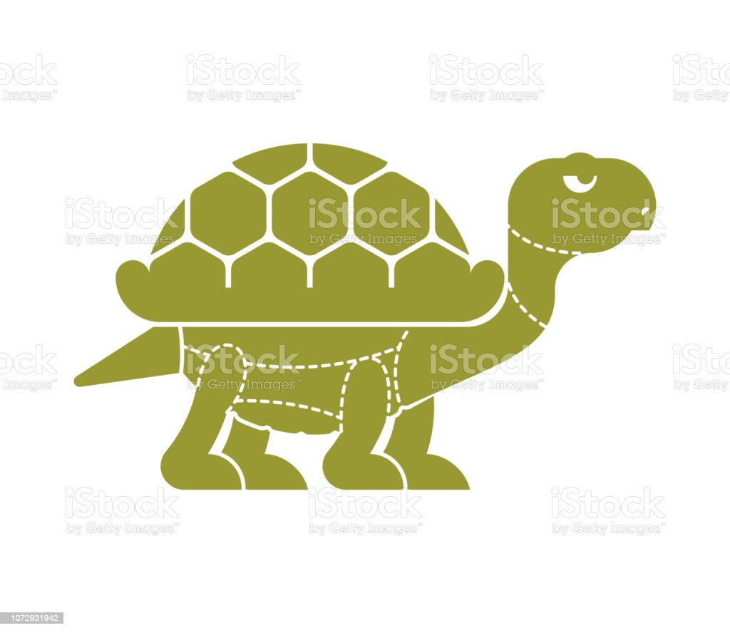 cut of meat turtle tortoise silhouette scheme lines of different vector id1072931942 cut of meat turtle tortoise silhouette scheme lines of different