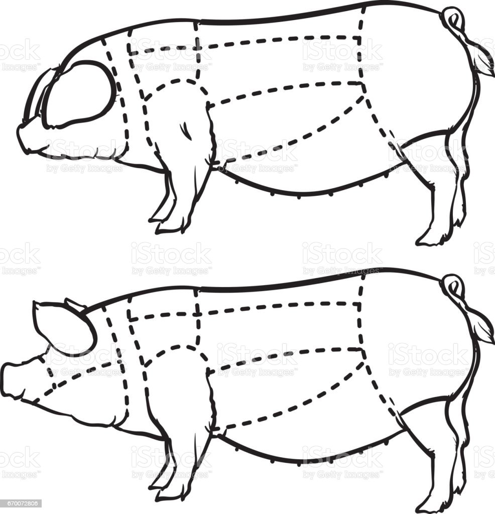royalty free pork loin clip art  vector images