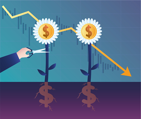 Cut the growing dollar flowers with scissors, the stock market fell