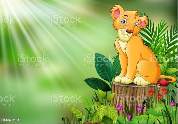 Cute a lion sitting on tree stump with green leaves vector id1066762192?b=1&k=6&m=1066762192&s=612x612&h=huhia73p 8qvduwtkijroscgkebfrnxkke j5qhmqvy=