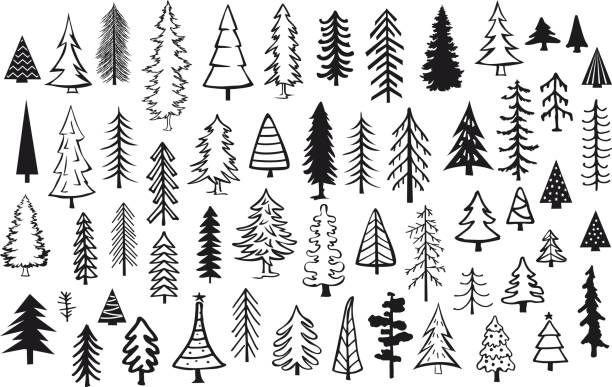cute abstract conifer pine fir christmas needle trees collection cute abstract conifer pine fir christmas needle trees collection pine tree stock illustrations
