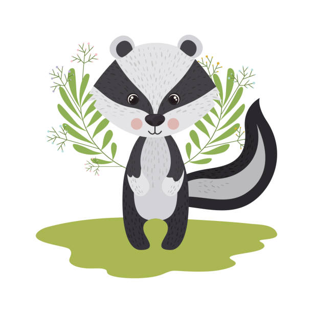 cute and adorable skunk with wreath cute and adorable skunk with wreath vector illustration design skunk stock illustrations