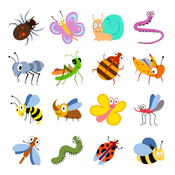 cute and funny bugs, insects vector collection. cartoon insects set - bugs stock illustrations, clip art, cartoons, & icons