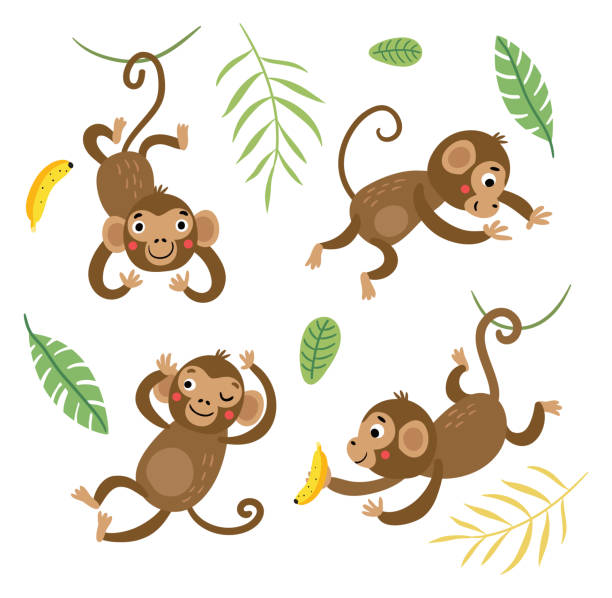 Cute and funny monkeys. Set of vector characters. Cute and funny monkeys. Set of vector characters. monkey stock illustrations