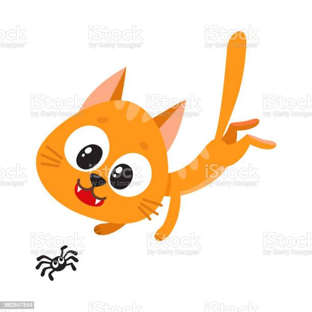 Cute and funny red cat character chasing hunting playing with little vector id660847844?b=1&k=6&m=660847844&s=612x612&h=v gdaaa6zpvvxk7j1iiraouj0sietflivp iphpdnn4=