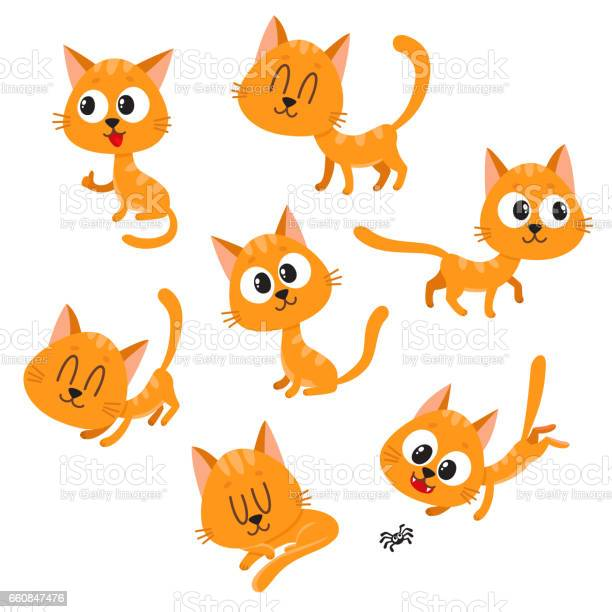 Cute and funny red cat character showing different emotions vector id660847476?b=1&k=6&m=660847476&s=612x612&h=n2vzjezolpuyjecnlsbyc47l7epzk8jzwygk6ukqefk=