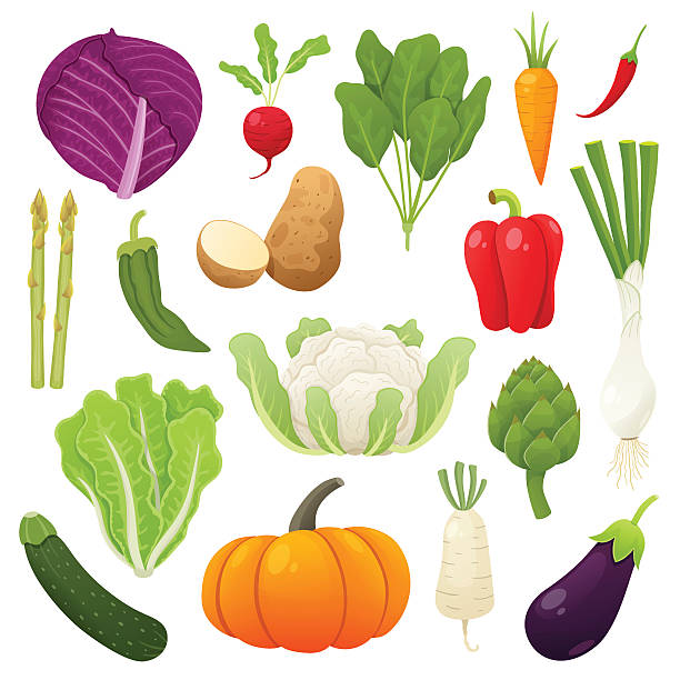 cute and tasty vegetables collection. vector illustration. - lettuce stock illustrations