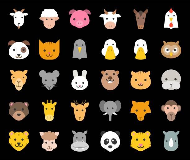 niedlichen tieres gesicht enthalten, bauernhof, wald und afrikanische tiere, flaches design - tierkopf stock-grafiken, -clipart, -cartoons und -symbole