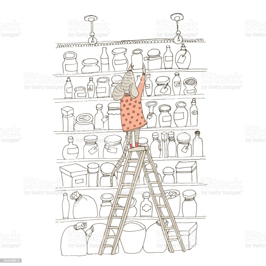 Cute animal like humans. Humanized animal. Dressed mouse folds jam in the pantry. Basement with lots of shelves hammered stocks and jam vector art illustration