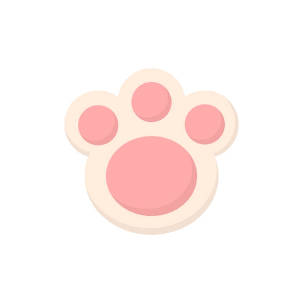 Cute animal paw Easter bunny paw cookie vector illustration. Cute pink animal paw icon, isolated. rabbit stock illustrations
