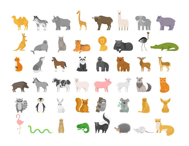 Cute animal set with farm and wild character. vector art illustration