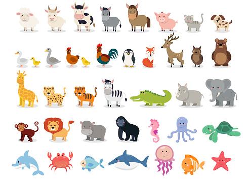 Cute animals collection: farm animals, wild animals, marina animals isolated on white background. Vector illustration design template