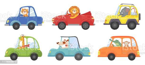 Cute animals in funny cars animal driver pets vehicle and happy lion vector id1178909973?b=1&k=6&m=1178909973&s=612x612&h=hm7emtca5lvcretleaupoog75v4sr2t95gcmnvz8o5a=