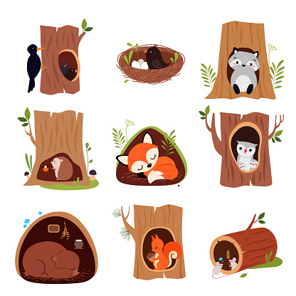 Cute Animals Sitting in Burrows and Tree Hollows Vector Set