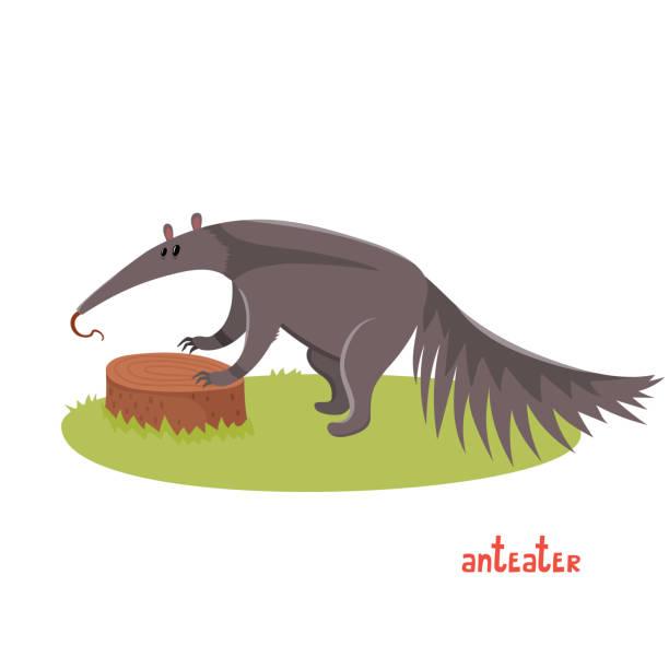 süße anteater im cartoon-stil. - ameisenbär stock-grafiken, -clipart, -cartoons und -symbole