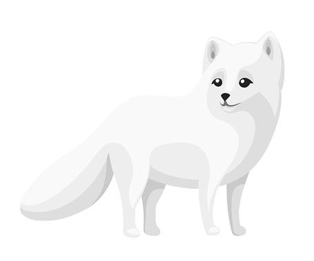 Cute Arctic Fox. Cartoon animal flat design. Vector illustration isolated on white background. Polar white fox