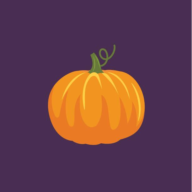 Cute Autumn Icon - Pumpkin Flat Design Style Autumn Icon - Pumpkin pumpkin stock illustrations