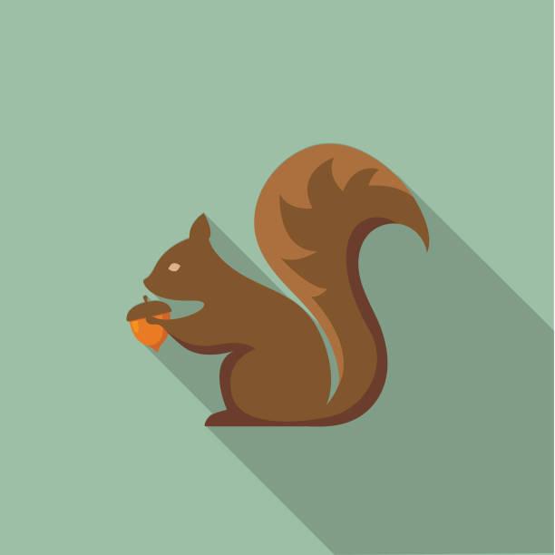 Cute Autumn Icon - Squirrel With Acorn vector art illustration