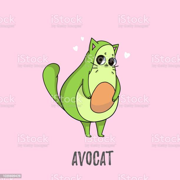 Cute avocado cat illustration cat design for greeting cards prints vector id1035699426?b=1&k=6&m=1035699426&s=612x612&h=nwwiaflesvc8laqui30sv2rfz0wwkbg0puvpbywpusu=