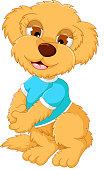 cute baby bear cartoon posing