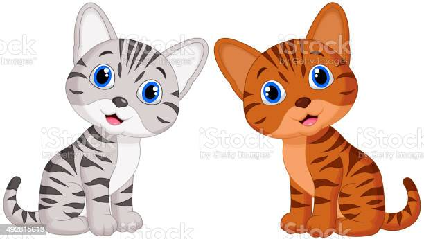 Cute baby cat cartoon vector id492815613?b=1&k=6&m=492815613&s=612x612&h=bieujvtskkxbuc4jaay1mwok0epxq8oojqy1kn ct34=