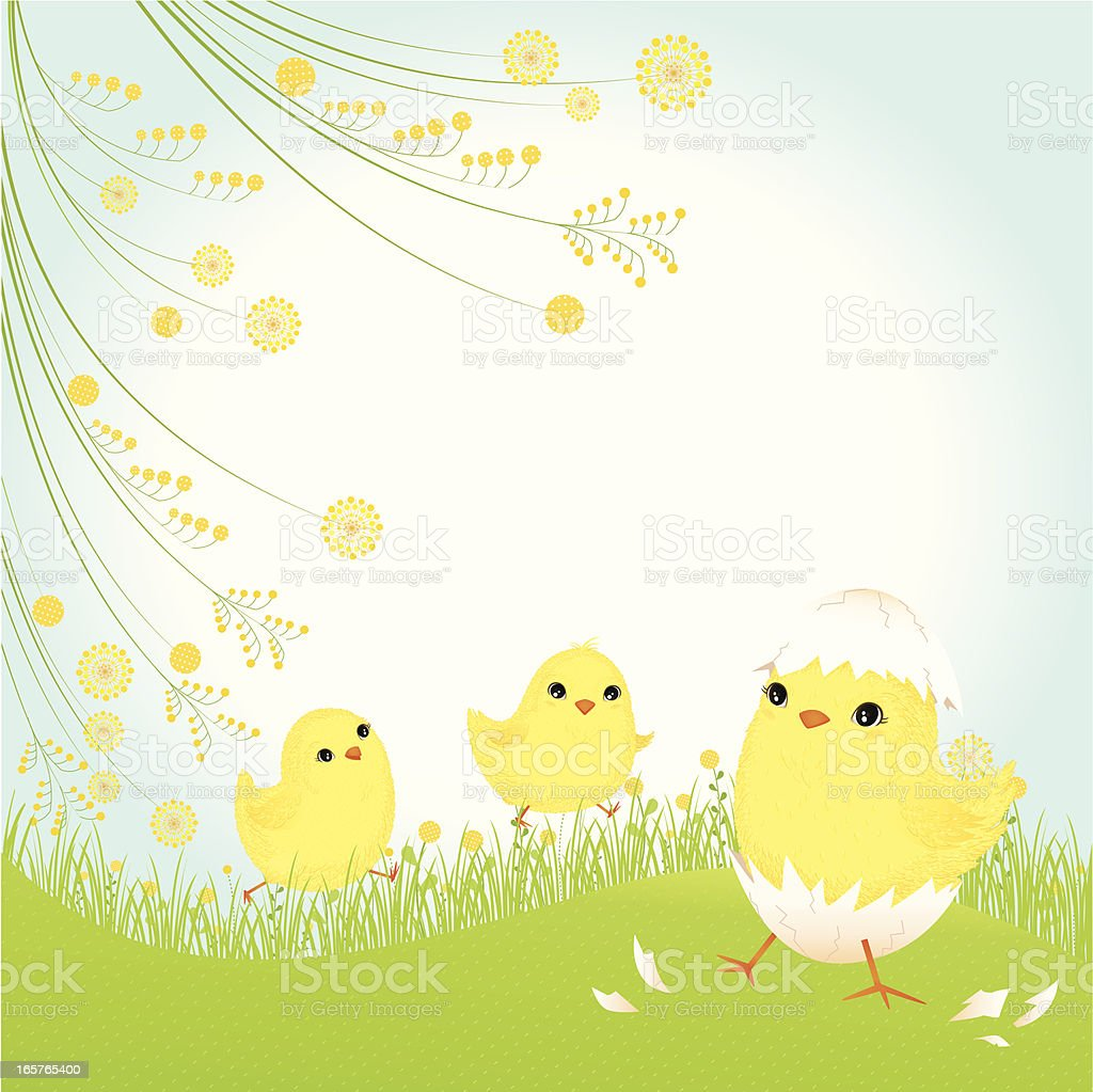 Cute Baby Chicks Background Stock Vector Art More Images Of Animal