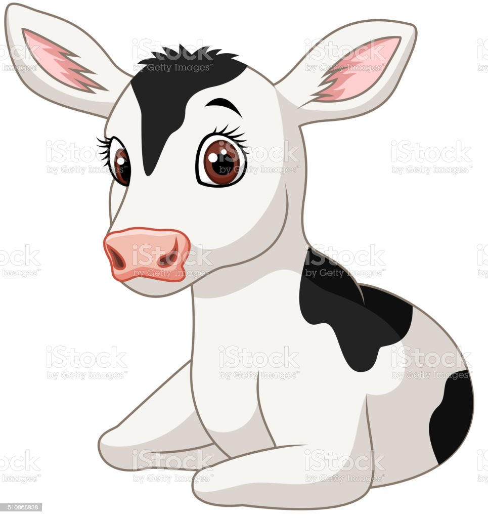 Cute baby cow isolated on white background vector art illustration