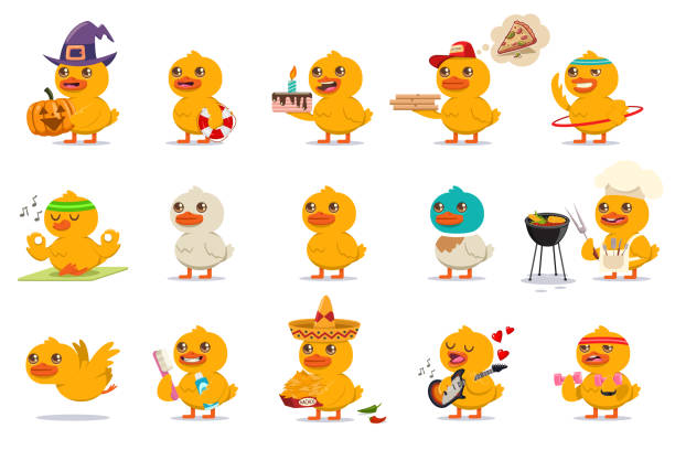 Cute baby duck set. Vector cartoon character of funny bird with different kawaii emotions and costumes isolated on a white background. Baby duck vector cartoon character set. duck bird stock illustrations