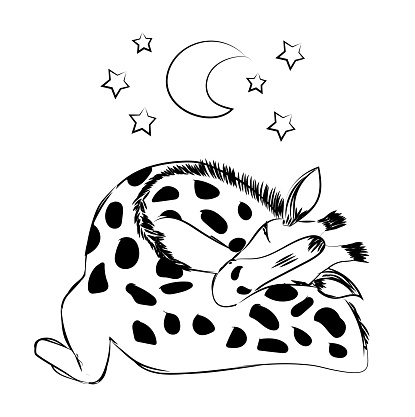 Cute baby giraffe sleeping with a plush and a pacifier for celebrating new birth - Hand drawn monochrome vector illustration isolated on white background for children and baby concepts