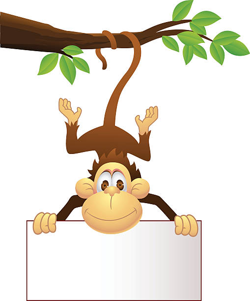 Best Monkey Swinging From A Tree Illustrations Royalty Free