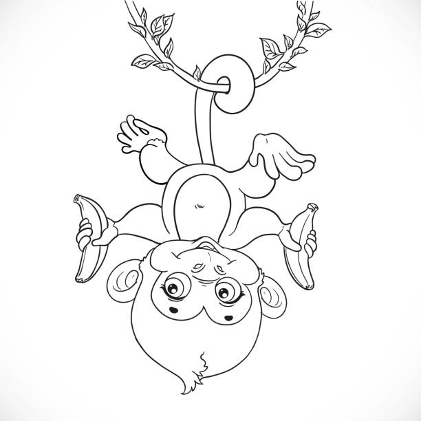341 Cute Monkey Coloring Pages Illustrations Clip Art Istock