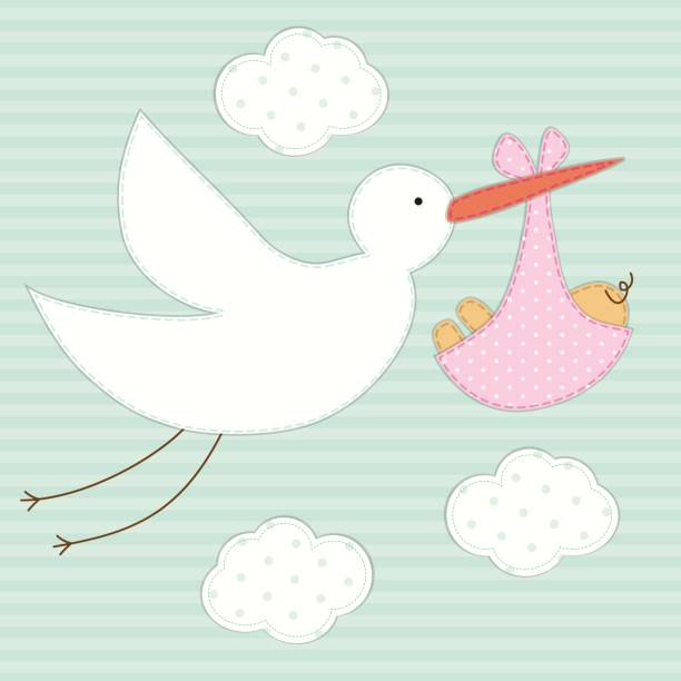 Cute baby shower card as retro fabric patch applique of stork and newborn baby Cute baby shower card as retro fabric patch applique of stork and newborn baby for your decoration shabby chic stock illustrations