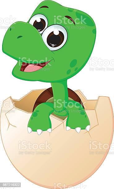 Cute baby turtles hatching vector id587216322?b=1&k=6&m=587216322&s=612x612&h=vm2l eglttmp11ddezcecxpoipof46x1oesri1vyqhs=