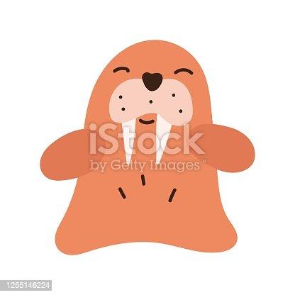 istock Cute baby walrus. 1255146224