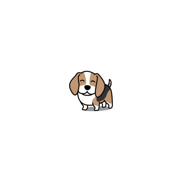 Cute beagle puppy smiling, vector illustration Cute beagle puppy smiling, vector illustration beagle stock illustrations