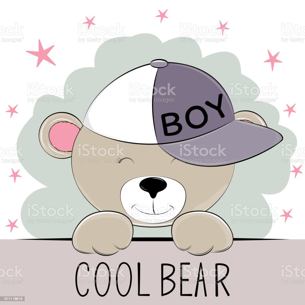 Cute bear in cap with the inscription cool bear. vector art illustration