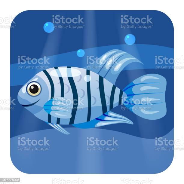 Cute beautiful blue tropical fish on sea background ocean vector vector id997778098?b=1&k=6&m=997778098&s=612x612&h=hhuekicaoy7ifeuazg4vscrg7xn3 5cuyy3zbpyb ss=