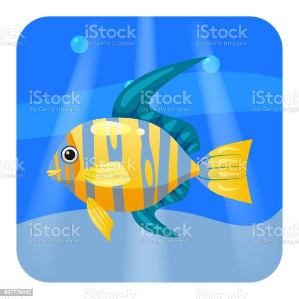 Cute beautiful yellow tropical fish on sea background ocean vector vector id997779040?b=1&k=6&m=997779040&s=612x612&h=jzi q cfv2isrljnz pbaosu9wj28uc2r4egcj1 l 8=