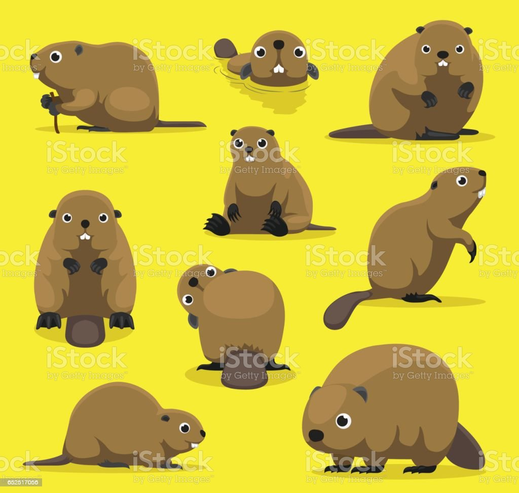 Cute Beaver Various Poses Cartoon Vector Illustration vector art illustration
