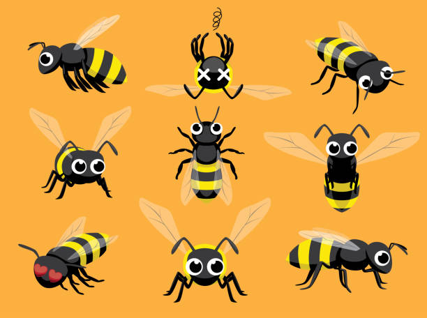 Cute Bee Cartoon Character Emotions vector art illustration