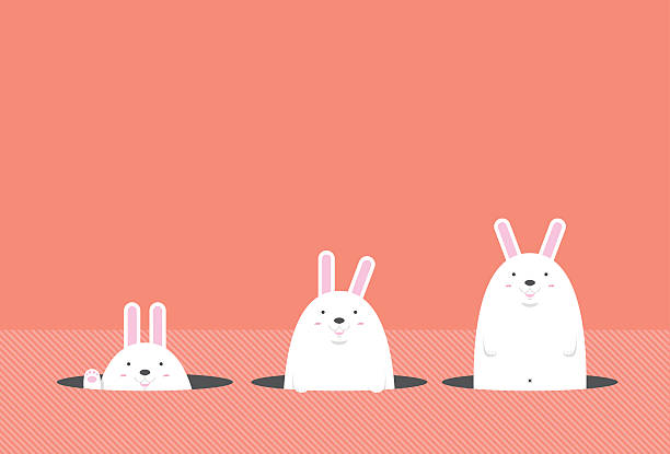 Cute Big Fat White Easter Rabbit Stock Vector Art More Images Of