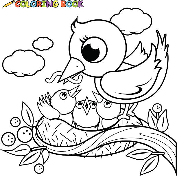 Cute Birds In The Nest Coloring Book Page Vector Art Illustration