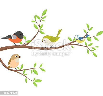 Vector Illustration of Cute birds with tree branch	  eps10