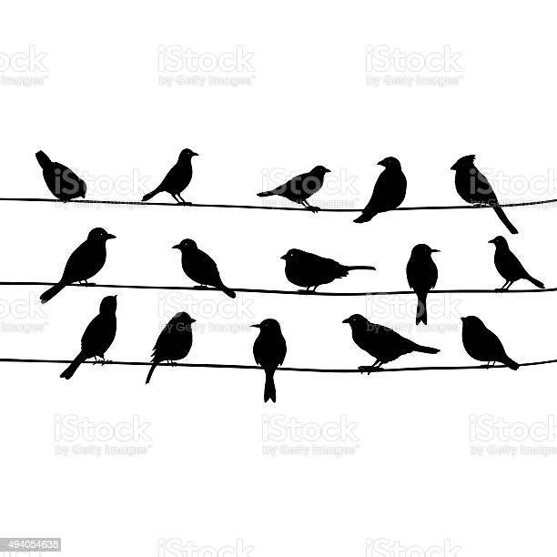 Cute black birds on a wire vector id494054638?b=1&k=6&m=494054638&s=612x612&h=heu3fposadsl8dtgt6eajyr6psvtwobl e5wyswjlyi=