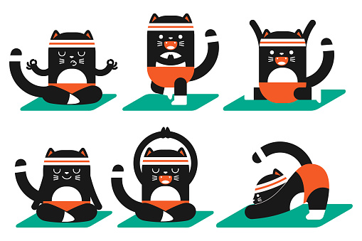 Cute black cat doing yoga poses exercises. Funny vector cartoon pet character set isolated on white background.
