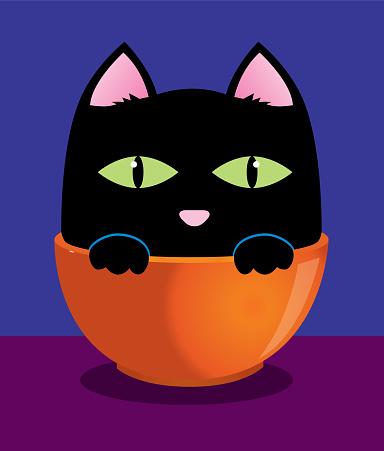 Cute Black Cat In An Orange Bowl