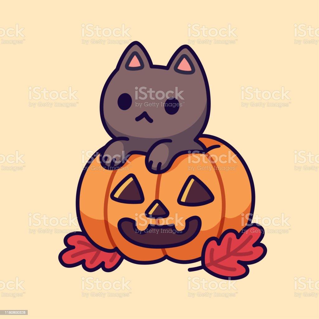 Cute Black Cat In Halloween Pumpkin Stock Illustration Download Image Now Istock